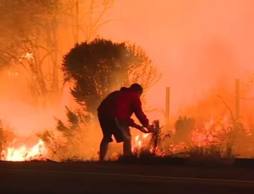 火事は逃げ方がとても大切。  知っておこう命の守り方を。