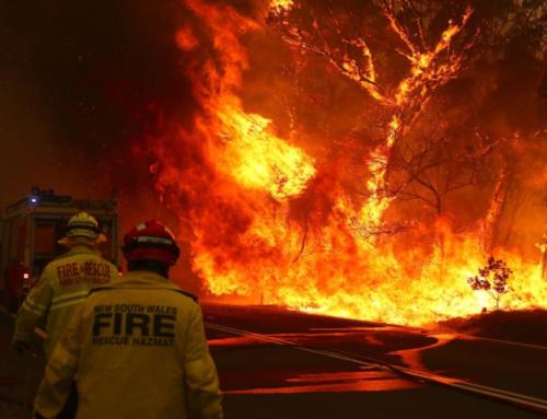 豪州山火事、100カ国分の二酸化炭素を排出か?