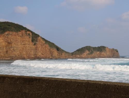 「気候非常事態宣言」の島、壱岐